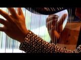 Edmar Castaneda Trio - Entre Cuerdas (Live @Bimhuis Amsterdam)