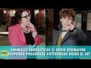 ANIMALES FANTÁSTICOS 2 | Eddie Redmayne responde preguntas potterhead desde el set | La Cosa Cine