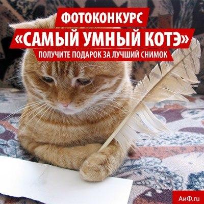 http://cs416829.vk.me/v416829954/3a0f/tdukH9cjwk4.jpg