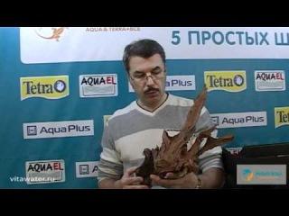 Урок 1. Установка аквариума