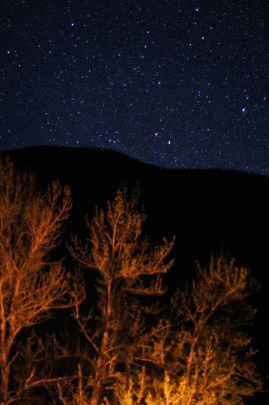 Звезды на Алтае