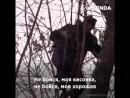 Ребята из Улан-Удэ спасают животных