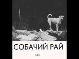 Собачий Рай - Первый Передоз (русский панк-рок)