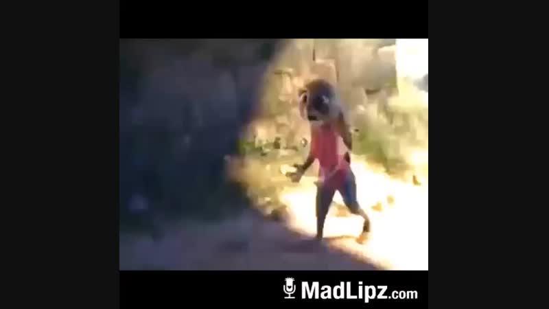MadLipz.com (480p).mp4