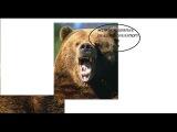 Медвежатные похождения №3-0_0