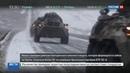 Новости на Россия 24 • Новая танковая дивизия на Урале получила более 50 новейших БТР-82А