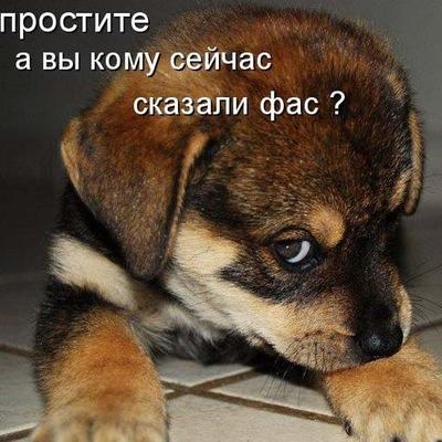 Аделина Никулина, 5 мая , Казань, id133761104
