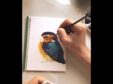 Today I painted this tiny fluff and decided to make a set of KingFisher postcards