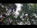 Эльф парк в парке Уралмаш