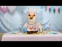 Megg, Mogg Owl / HAPPY FUCKING BIRTHDAY