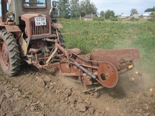 Картофелекопалка к трактору
