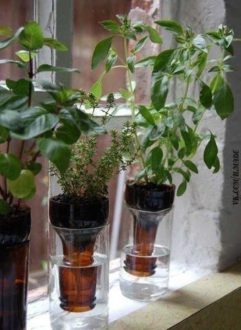 Идея для посадки комнатных растений! Умный дом — мастерская чудес!