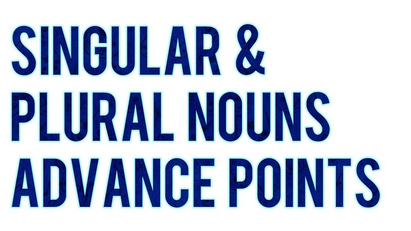 SINGULAR AND PLURAL NOUNS - Advance points- That you must know