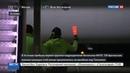 Новости на Россия 24 Британские военные высадились в Эстонии