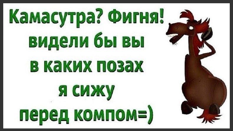 https://pp.userapi.com/c543103/v543103722/23034/pcs_906T6tg.jpg