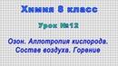 Химия 8 класс (Урок№12 - Озон. Аллотропия кислорода. Состав воздуха. Горение.)