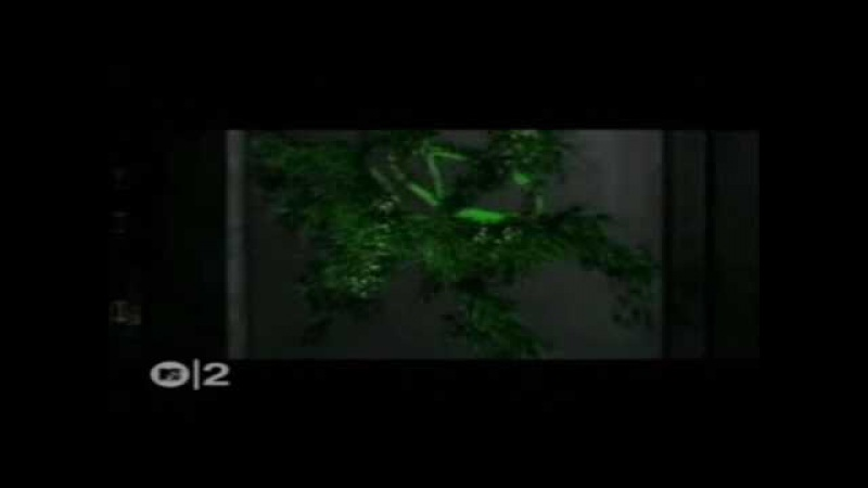 Linkin Park - Reanimation - Frgt10 - Alchemist Feat Chali 2na 05.