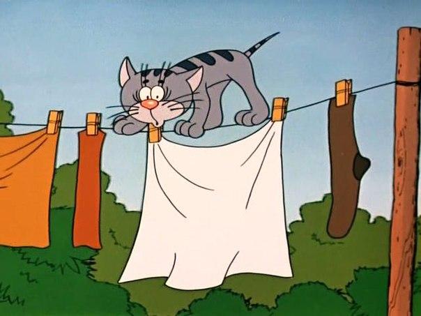 Wizart Animation снимет новую серию оприключения котенка с