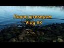Ловля штекером Vlog 3