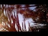 Nastasya! - Middle (Cover DJ Snake feat Bipolar Sunshine)