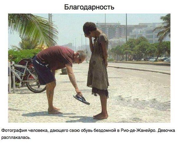 Фотографии, которые вернут вам веру в Человечество.