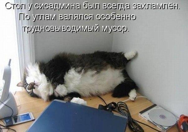https://pp.vk.me/c413917/v413917412/b616/-zOVo8pYd1g.jpg