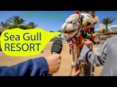 ЕГИПЕТ - Хургада отель Sea Gull Resort Hurghada красное море , влог HD