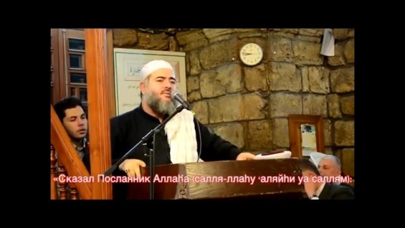 Шейх Джамиль- Предостерегаю от крайностей в религии!.mp4