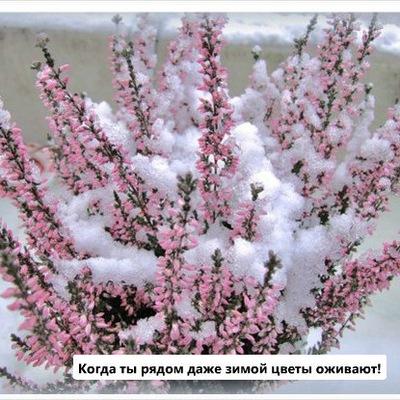 Аня Митник, Львов, id228380441