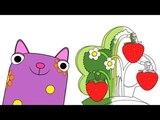 Раскраска - Деревяшки - Радуга - развивающие мультики малышам - Учим цвета - серия 13