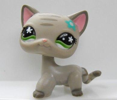 Раскраска пет шоп кошка