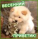 Фото Сони Зборовской №23