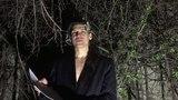 Ливан (ПЭХ') - Комар (стихотворение)