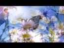 Мантра Харе Кришна. Очень красивая музыка и голос. Очищает сердце, убирает беспо