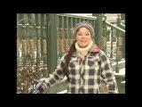 Укрытие клематисов на зиму