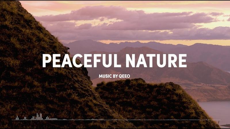 Peaceful Nature (Betatunes Original Video Story)