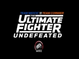 27й сезон The Ultimate Fighter на Матч! Боец