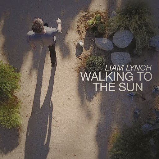 Liam Lynch альбом Walking to the Sun