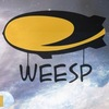 WEESP | Рок, Электроника, Альтернатива, Металл.