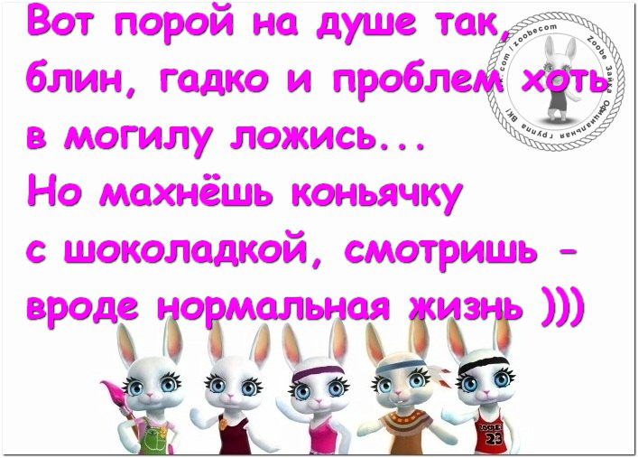 https://pp.userapi.com/c543103/v543103493/312f8/43mFK7THIzA.jpg