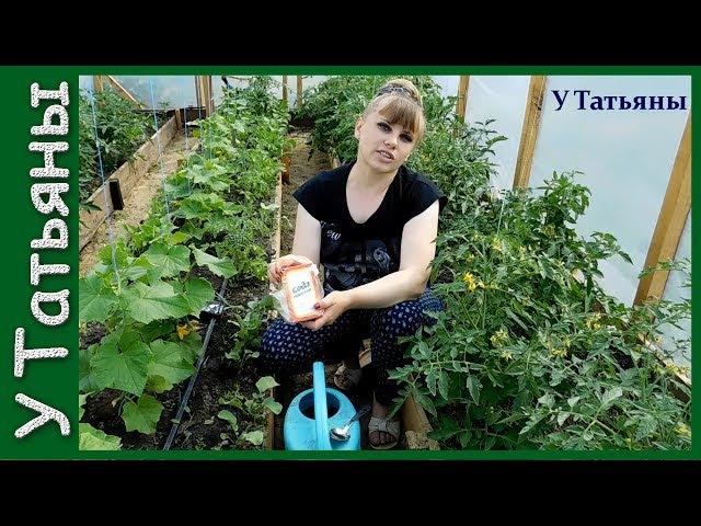 СОДА - спасатель вашего огорода! Пищевая сода - подкормка для: огурцов, томатов и ...