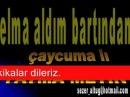 FATMA METİN-ELMA ALDIM BARTINDAN.wmv