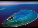 Жизнь на Большом Барьерном рифе Удивительная природа Австралии 3 серия National Ge