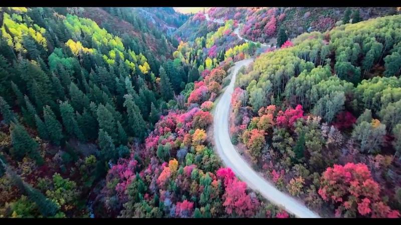 Farmington Canyon Fall Colors and Snow