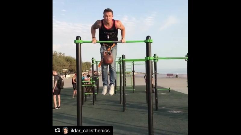 11 muscle 16kg