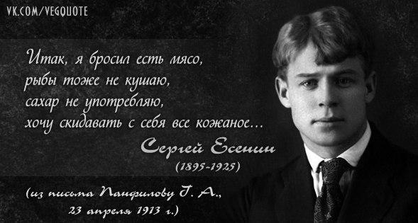 Цитаты великих и известных людей, афоризмы - Citaty info