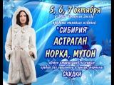 5, 6, 7 сентября в ЦКиД Полярная Звезда мех изд.