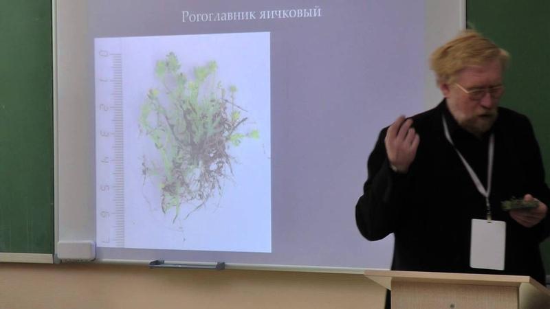 9 класс Морфология и систематика растений