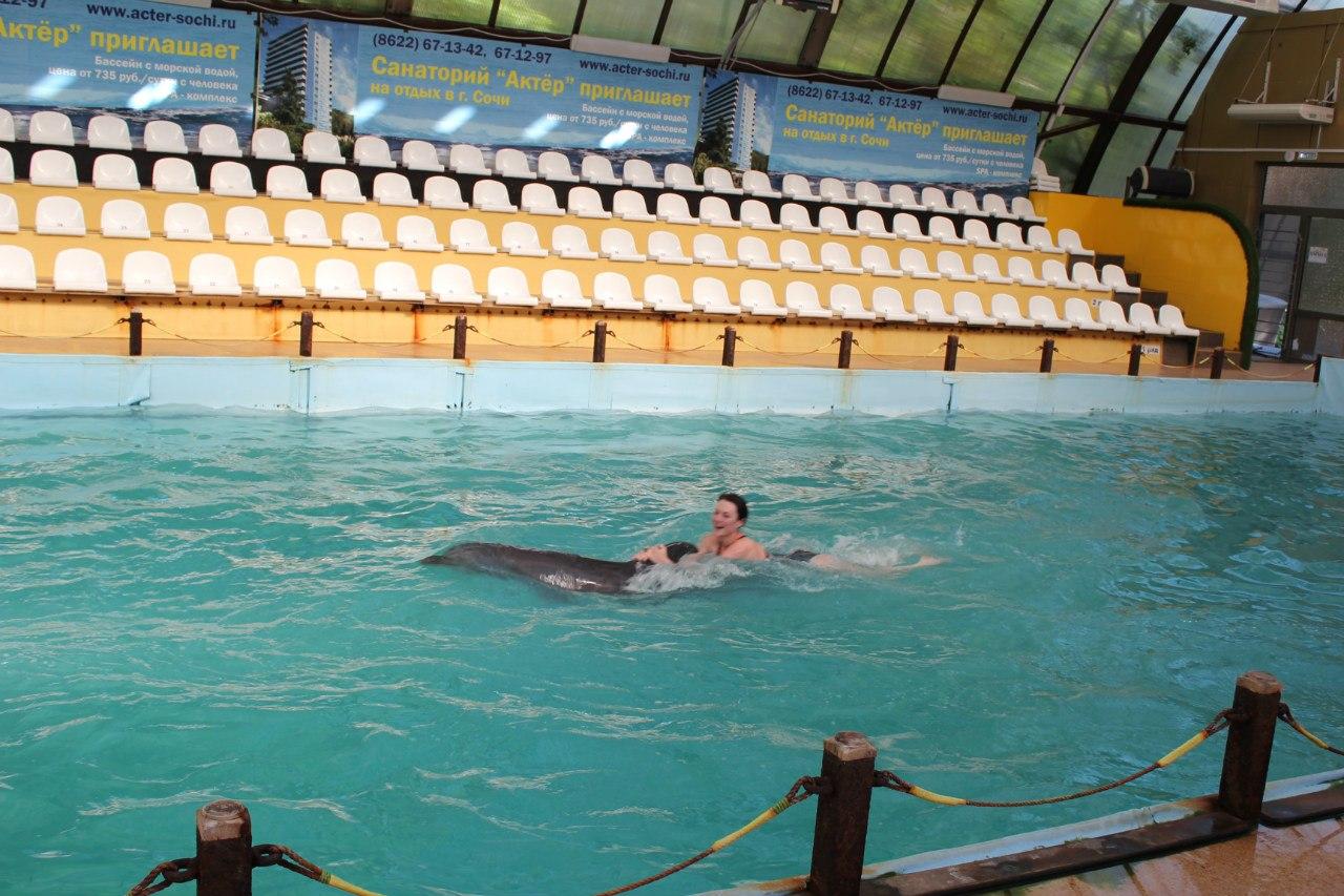 поплавать с дельфинами - это подарок