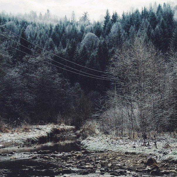фото из альбома Алексея Губанова №7